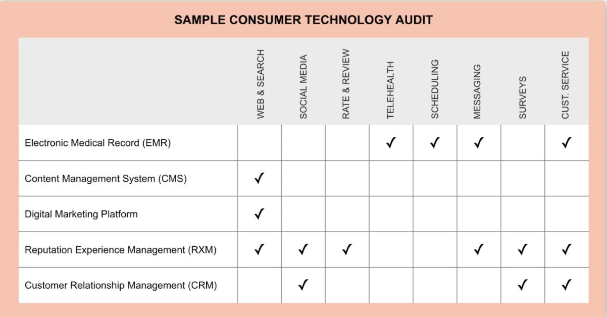 sample consumer technology audit